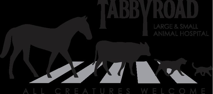 Tabby Road Animal Hospital Logo